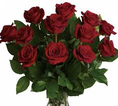 Wholesale Flowers Philadelphia - philadelphia pa florists flowers philadelphia pa almeidas
