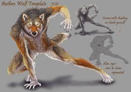 anthro wolf template by elementalspirits on deviantart