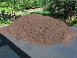garden mulch benefits advantages of adding mulch in gardens