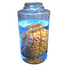 Lighted Halloween Costumes by Amazon Com Mad Scientist Lighted Brain In Jar Halloween Prop