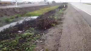 what burning peat moss looks like youtube