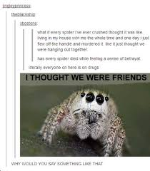 Spider Bro Meme - spider bro is always betrayed by the humans