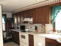 Kitchen Cabinet Doors Painting Ideas Paint Kitchen Cabinets Ideas What Color Video And Photos