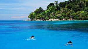 bungalow bay aussie divers phuket