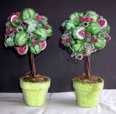 Real Topiary Trees For Sale - decorating double vine topiaries trees for garden plant ideas