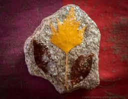 spirit halloween gig harbor rock on hidden artistic treasure on whidbey island