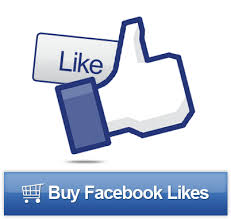 facebook fan page followers 5 000 facebook fanpage likes buy real facebook likes fans shares
