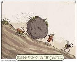 Rolling Stones Meme - funny cartoon rolling stones vs the beatles humor pinterest