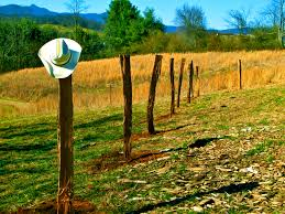decoration stunning marvelous wood fence posts garden artistry