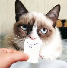 Grumpy Cat Meme Good - grumpy cat meme grumpy cat pictures