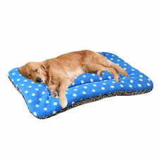 Comfortable Dog For Puppy Poochnkitty