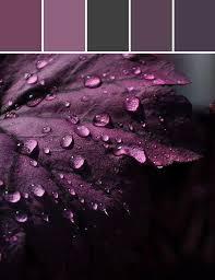 Hues Of Purple Best 25 Plum Bedroom Ideas Only On Pinterest Purple Bedroom