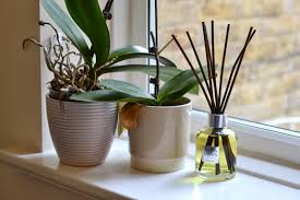 new from molton brown aroma reeds home fragrance london