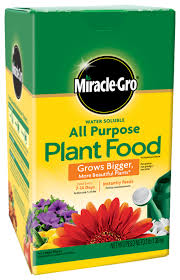 flower food packets miracle gro water soluble all purpose plant food plant food