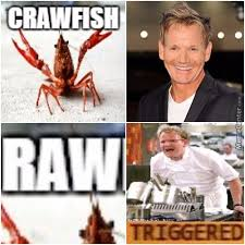 Chef Ramsy Meme - chef ramsay memes best collection of funny chef ramsay pictures