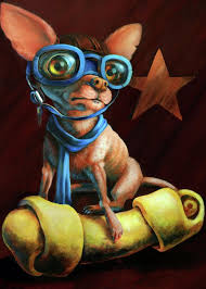 chihuahua greeting cards america