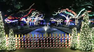 Christmas Lights At Houston Zoo by Christmas Lights At The Zoo Youtube