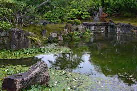amazing backyard zen garden home design new luxury with backyard