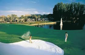 Trinity Florida Map by Saddlebrook Resort U0026 Spa Tampa Golf Tennis Spa Meetings