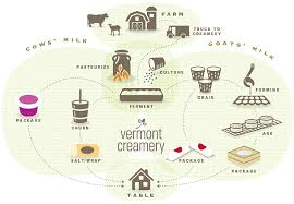 from farm to table the process of cheesemaking