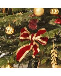 How Much Are Real Christmas Trees - cranberry real tree office xmas trees uk christmas tree rentals