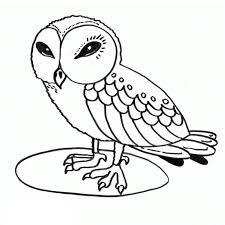 owl colouring pages www mindsandvines com