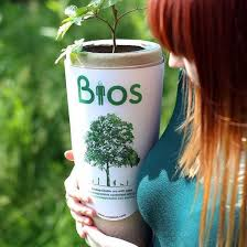 bios urn now you can become a tree after you die thanks to bios urn metro