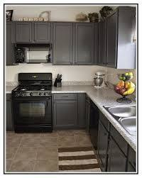 light grey kitchen cabinets with black appliances 11 black appliances ideas kitchen remodel new kitchen