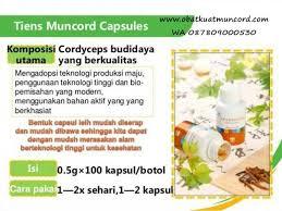 distributor resmi tempat jual obat kuat pria muncord capsule tiens