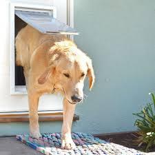 Pet Doors For Patio Doors Endura Flap Pet Door For Doors Dog Doors Petdoors