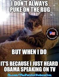 Dos Xx Memes - dos xx cat i dont always puke but when i do obama is on tv kelli d