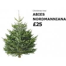 buy a 25 christmas tree at ikea and get a 20 ikea voucher