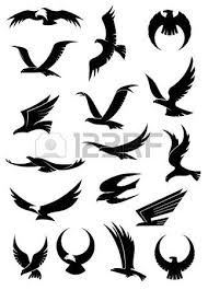 falcon images u0026 stock pictures royalty free falcon photos and