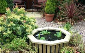 Small Garden Ponds Ideas Diy Garden Pond Ideas Impressive Ideas Small Garden Ponds