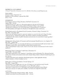 cover letter text resume template text format resume template