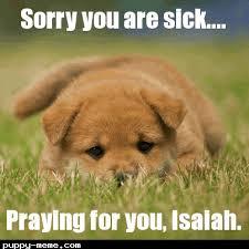Sick Puppy Meme - well