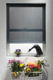 43 best window box ideas images on pinterest gardening flowers
