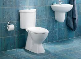 caroma profile smart 305 dual flush toilet with sink toto aquia dual flush toilet eco building products