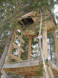 how to build a natural deer hunting blind know prepare survive