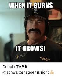 Schwarzenegger Meme - 25 best memes about schwarzenegger schwarzenegger memes
