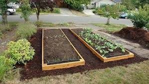elegant building raised vegetable beds build your own raised beds
