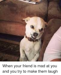 Mad At You Meme - when your friend is mad at you and you try to make them laugh