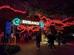 Houston Zoo Lights Coupon Houston Zoo Home Facebook
