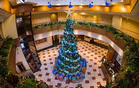 When Do Christmas Decorations Go Up At Disneyland Enjoy The Holidays At The Hotels Of The Disneyland Resort Disney