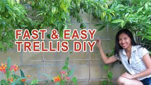 easy fast trellis diy no skills required youtube