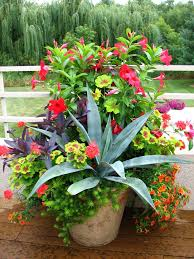 Potted Garden Ideas 748 Best Container Gardening Ideas Images On Pinterest