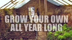 build underground greenhouse for year round gardening