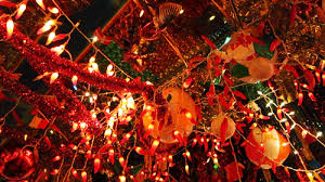 gifriends where chilli pepper lights meets tree