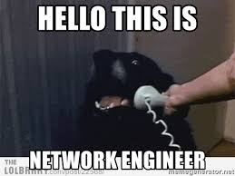 Network Engineer Meme - hello this is network engineer hello this is dog meme generator