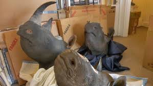 where to buy horns there s a country that will pay 300 000 per rhino horn to cure